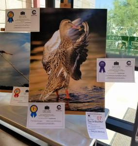 Greg Wickenburg, A Quadriplegic, Wins Local Nature Photo Contest.